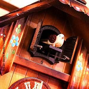 cuckoo clocks online store