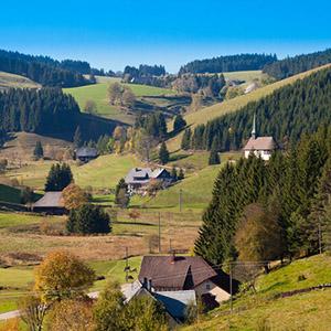 Hier im Schwarzwald entstanden die ersten Kuckucksuhren